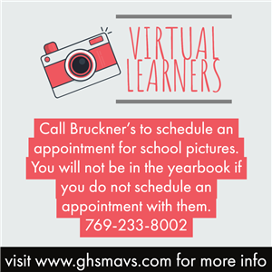 Virtual Learners Pictures